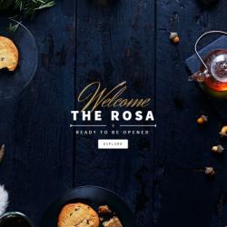 Rosa-510x600